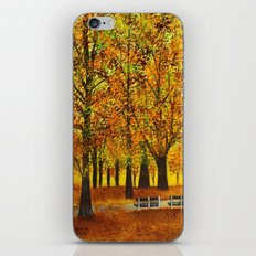 Golden park II iPhone & iPod Skin