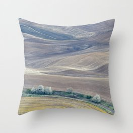 Palouse Abstract II Throw Pillow