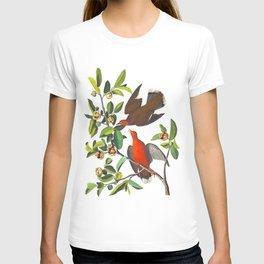 Zenaida Dove T-shirt