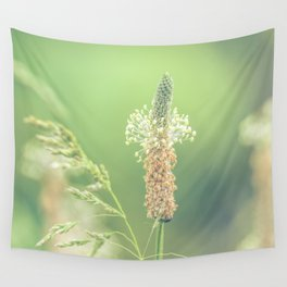 Ribwort Plantain Weeds // Flowers Wall Tapestry