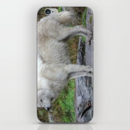 Arctic Wolf HDR iPhone Skin