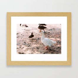 """Think Goose"" Framed Art Print"