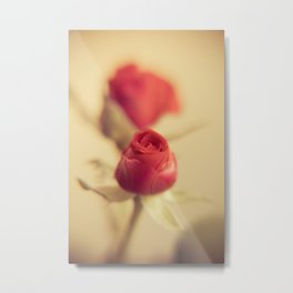 A red rose for your sweetheart ... Metal Print