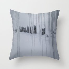 February: 2 Throw Pillow