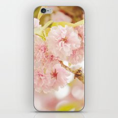 Pink Flower Photography | Shabby Chic Blossoms iPhone & iPod Skin