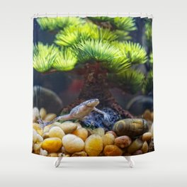 Friendly Frog HD Shower Curtain
