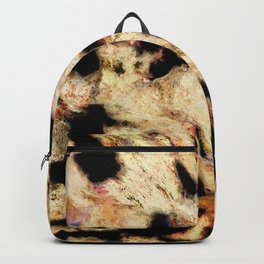 Scour Backpack