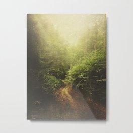 Once Upon A Path Metal Print
