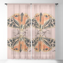 Tiger Magical Moths on Peachy  Sheer Curtain