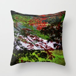 Environ (Japan) Throw Pillow
