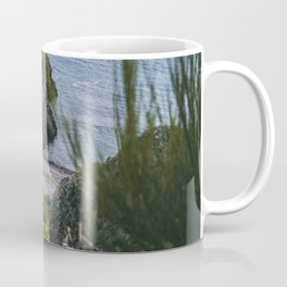 Rocky coast with grass in Stoneheaven Coffee Mug