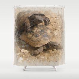Slow Love - Tortoises Shower Curtain