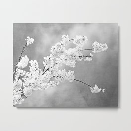 Black and White Floral Photography, Grey Silver Flower Art, Gray Nature Botanical Spring Photo Metal Print