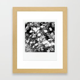 flowers in shades of grays Framed Art Print