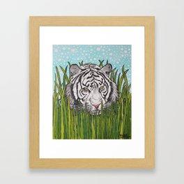 White tiger in wild grass Framed Art Print