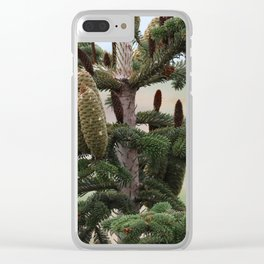 Closeup of large cones at the top of a pine tree Clear iPhone Case