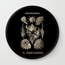 """""""Prosobranchia"""" from """"Art Forms of Nature"""" by Ernst Haeckel Wall Clock"""