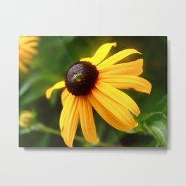 Flower with Bug Metal Print