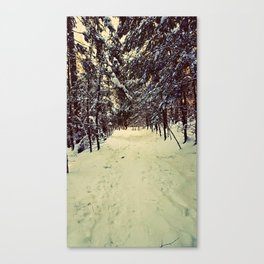 Wintery Snowshoe Hike Canvas Print
