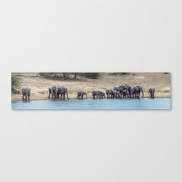 Elephant Panorama: Family at the Watering Hole Canvas Print