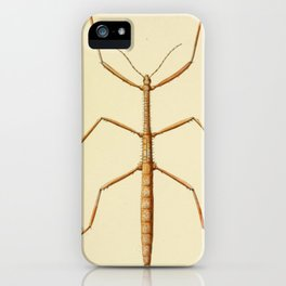 Antique Stick Insect iPhone Case