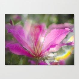 Flare Flower Canvas Print