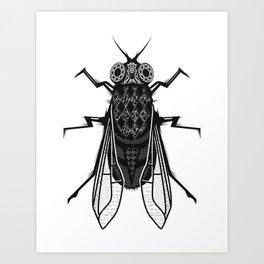 A housefly Art Print