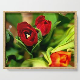 rubeum tulips Serving Tray