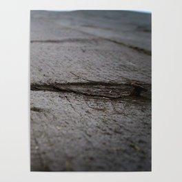 Rusty Nail Poster