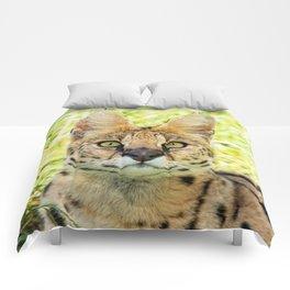 SERVAL BEAUTY Comforters