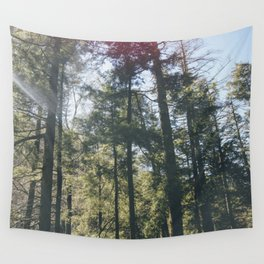 Daylight Wall Tapestry