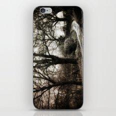 Village Road iPhone & iPod Skin