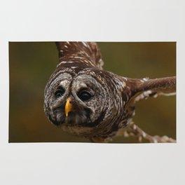 Owl~ Rug