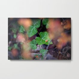 Leaves GO 02 Metal Print