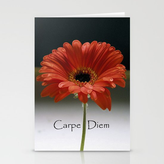 Carpe Diem (for the love of LIFE!) Stationery Cards