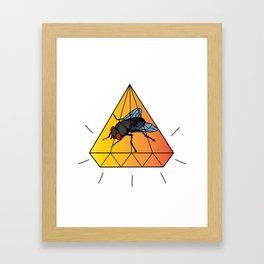 Mosca Preciosa Framed Art Print