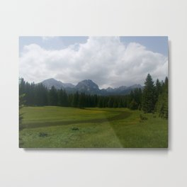 Fields of glory Metal Print