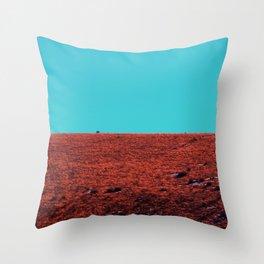 Spliiit Throw Pillow