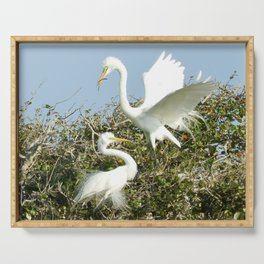 Bird Series: Nesting Great Egrets Serving Tray