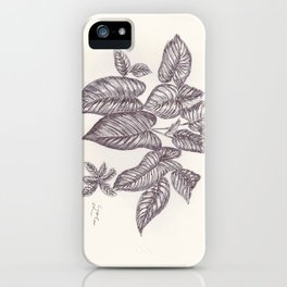 BALLEPN TRAVEL IN LAOS 1 iPhone Case