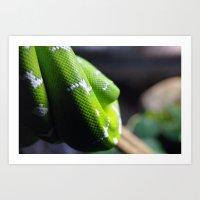 monty python Art Prints featuring Python by LoganGalloway