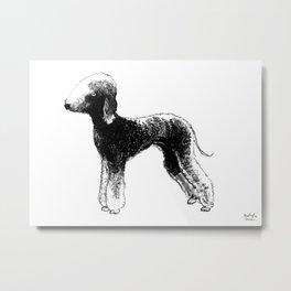 Bedlington terrier dog Metal Print