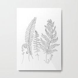 Minimal Line Art Fern Leaves Metal Print