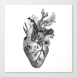 Mermaid Heart Canvas Print