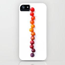 Plum Gradient iPhone Case