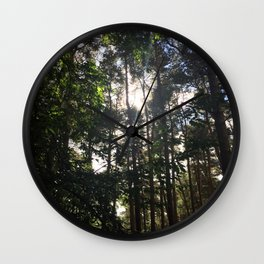 Light Through Trees. Rushmere Country Park, Bedfordshire Wall Clock