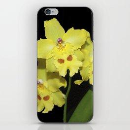 Glorious Golden Orchid - Odontonia Yellow Parade Alpine iPhone Skin