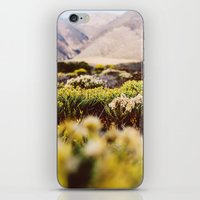 big sur iPhone & iPod Skins featuring Big Sur by Shannon Lepere