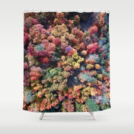 FOREST - AUTUMN - COLORS - PHOTOGRAPHY - NATURE Shower Curtain