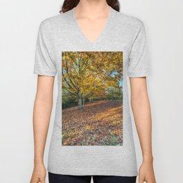 An English Autumn Unisex V-Neck